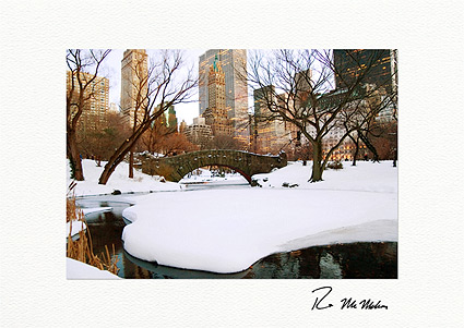Central Park New York City Boxed Christmas Cards