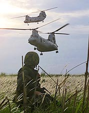 CH-46 Helicopters & 3rd Battalion Marines Photo Print for Sale