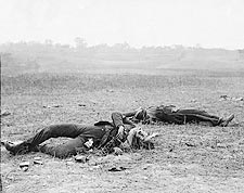 Civil War Confederate Casualties Antietam Photo Print for Sale