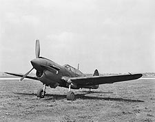WWII Curtiss P-40 Warhawk  Photo Print for Sale