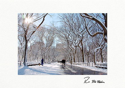 Literary Walk, Central Park New York City Individual Holiday Greeting Cards