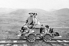 Man & Dogs Rail Cart Trip Nome, Alaska 1912 Photo Print for Sale