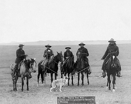 Old West Cowboys Roping Wolf 1887 Photo Print