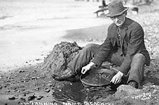 Panning for Gold Nome Beach Alaska 1900 Photo Print for Sale