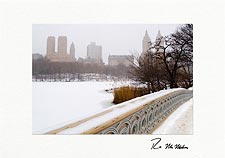 Personalized Central Park Winter Holiday Cards