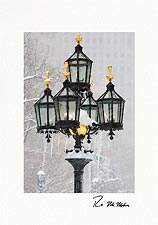 Personalized Freezing City Hall Gaslights New York City Holiday Cards
