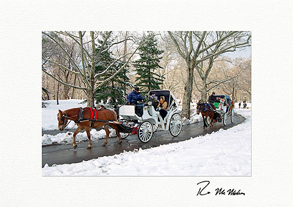Personalized Winter Carriage Ride, Central Park New York City Holiday Christmas Cards