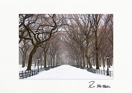 Poet's Walk Winter, Central Park Boxed Holiday Cards