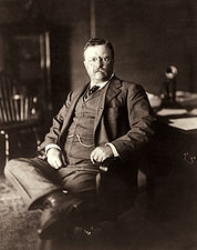 President Theodore Roosevelt 1910 Portrait Photo Print for Sale
