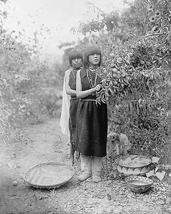Tewa Girls Fruit Gatherers Edward S. Curtis Photo Print