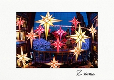 Time Warner Center Christmas Lights NYC Personalized Holiday Cards