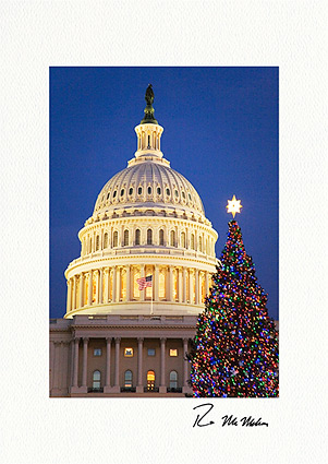 Washington D.C. Capitol Christmas Tree Boxed Christmas Cards