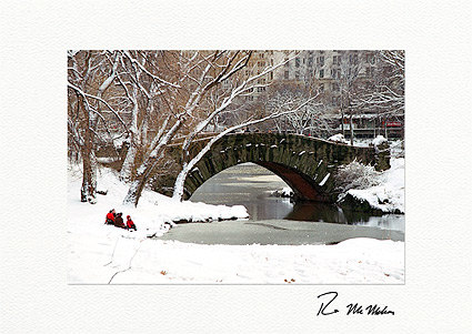 Winter Retreat, Central Park New York City Individual Christmas Cards