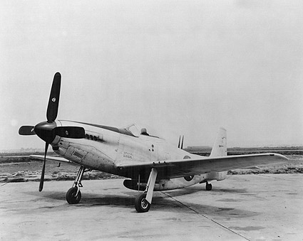 WWII Aircraft P-51 Mustang  Photo Print