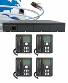 Avaya IP Office Digital Economy Plus Package