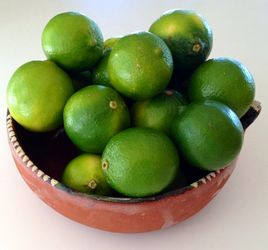 Fresh Mexican Limes - Limones