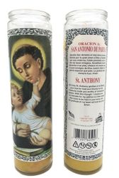 Saint Anthony of Padua Candle - San Antonio (Pack of 6)