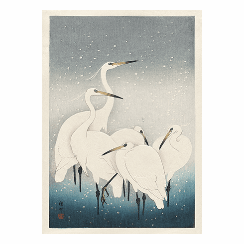 MFA <i>Herons in the Snow</i> Holiday Cards