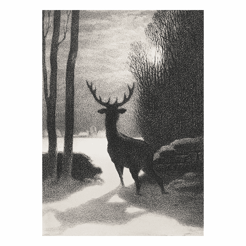 MFA <i>Stag in Winter Moonlight</i> Holiday Cards