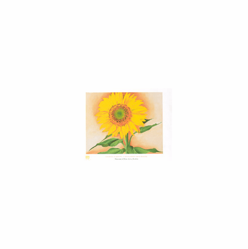 O'Keeffe <i>A  Sunflower from Maggie</i> Poster