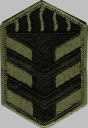 5TH INFANTRY BRIGADE SUBDUED 3¼