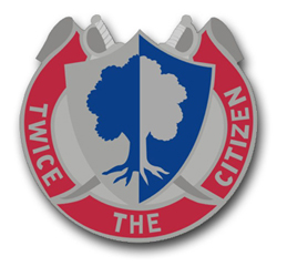 Army Reserve Command  Unit Crest Vinyl Transfer Decal