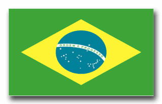 Brazil Flag Vinyl Transfer Decal
