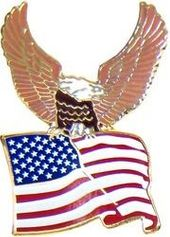 Eagle with Flag Lapel Pin