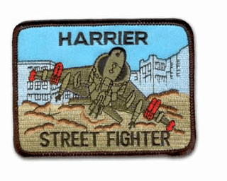 "HARRIER STREET FIGHTER 3.5"" MILITARY PATCH"