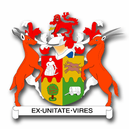 South Africa Coats Of Arms Decal