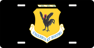U.S. Air Force 18th Wing License Plate