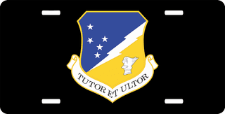 U.S. Air Force 49th Fighter Wing License Plate