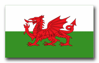 Wales Flag Vinyl Transfer Decal
