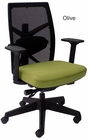 300 Lbs. Performance Multi-Function Office Chair w/Seat Slide in Olive