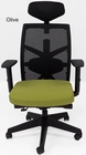 300 Lbs. Performance Multi-Function Office Chair w/Seat Slide & Headrest in Olive