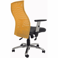 Ergo Vibrant Office Seating