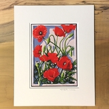 Corn Poppy Matted Print