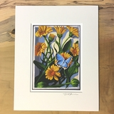 Pot Marigold Matted Print