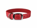 1/2 inch Wide Leather Collars