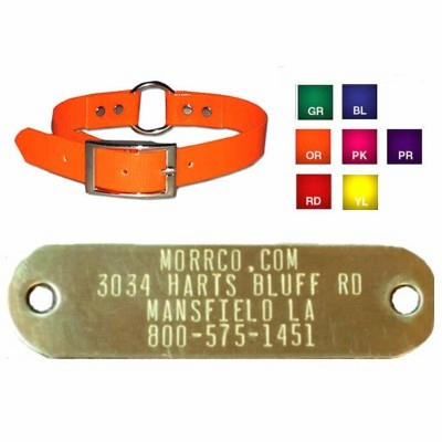 1 inch Sunglo Center Ring Collar with Name Plate