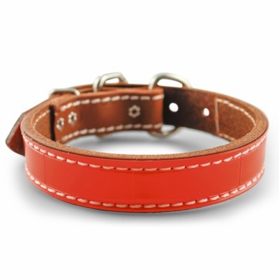 1 inch wide DF Reflective Leather Dog Collar