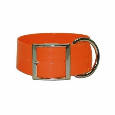 2 inch wide Orange SunGlo collar
