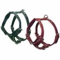 2 Ply Leather Dog Harness With Studs