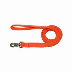 2 Ply Nylon Dog Lead 1 x 4 ft.