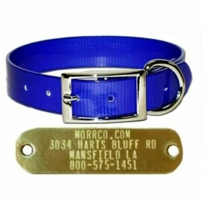 3/4 in wide Sunglo Collar with Name Plate