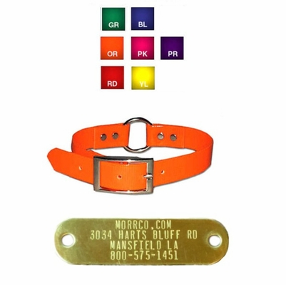 3/4 inch Center Ring Sunglo Collar with attached Name Plate