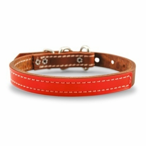 3/4 inch Reflective DF Leather Collar