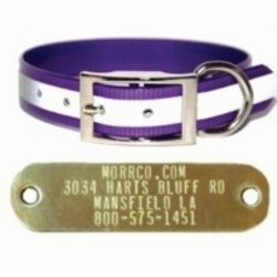 3/4 Reflective Dog Collar with Name Plate