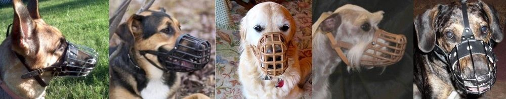 Basket Dog Muzzles