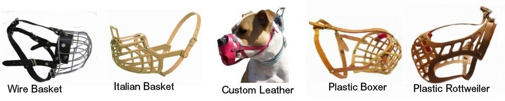 Basket Muzzles are the best muzzles for all dogs!